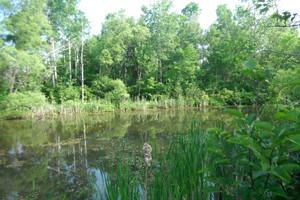 Parc de la rivière Chaudière Lac-Mégantic